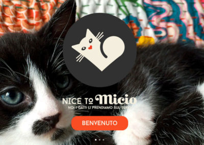 Nicetomicio.com. Sito web e motion graphic